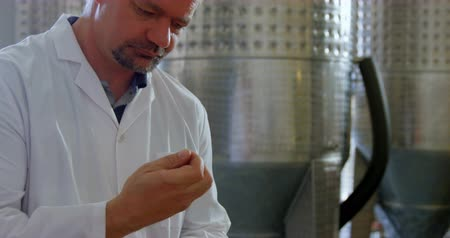 distillation : Mature male worker smelling sloe gin in factory 4k Stock Footage
