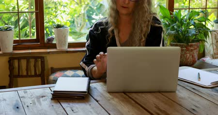 diary : Attentive mature woman using laptop at home 4k