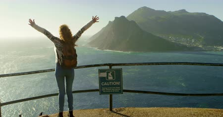 railing : Rear view of woman standing with arms outstretched near a sea 4k Stock Footage
