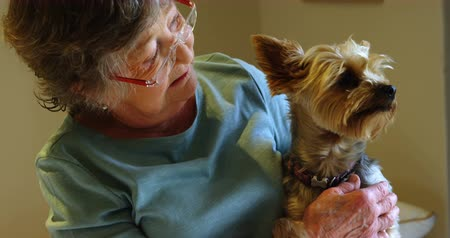 homely : Senior woman holding a dog at home 4k Stock Footage