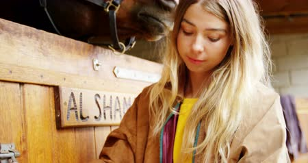 stabilní : Close-up of woman open the horse stable door 4k