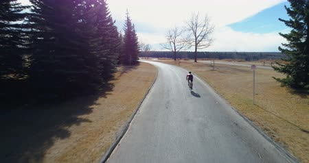 ciclismo : Rear view of cyclist cycling through a country road in forest 4k