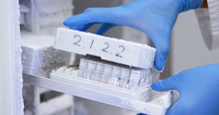 mrazák : Close-up of scientist opening test tube box from freezer in laboratory 4k