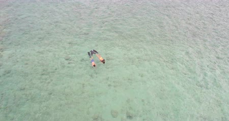 yüzgeçler : Aerial view of couple snorkeling in the sea 4k
