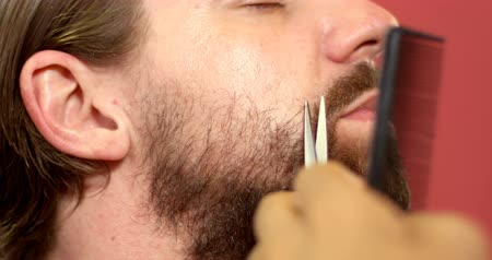 barber scissors : Close up of man getting his beard trimmed with scissors at barbershop 4k