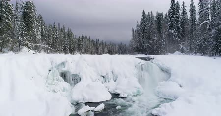 isolamento : Stream flowing through snowy forest during winter 4k