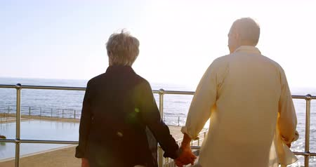 together trust : Rear senior couple standing at promenade on a sunny day 4k