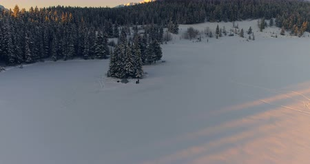 tűlevelű : High angle view of tourists on the snow covered landscape 4k