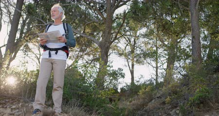 active ageing : Senior man looking at map in the forest on a sunny day 4k