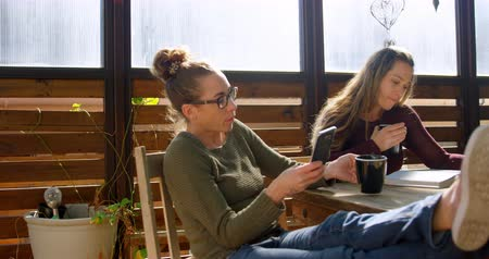 lesbian couple : Lesbian couple using mobile phone and reading book while having coffee at cafe 4k Stock Footage