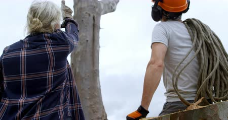 silvicultura : Lumberjacks interacting with each other before cutting tree in forest 4k Stock Footage