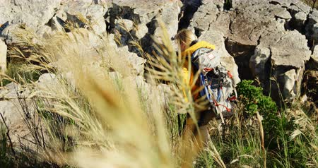 active ageing : Rear view of senior woman climbing rock at countryside 4k