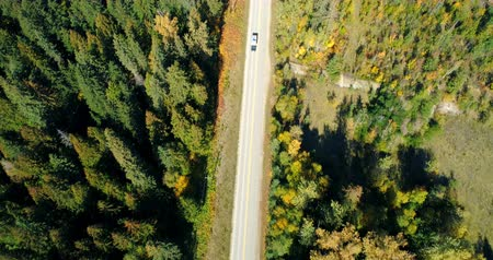 ortam : Aerial view of vehicle moving on road at countryside on sunny day 4k Stok Video