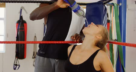 bottle feeding : Male trainer feeding water to female boxer in boxing ring at fitness studio 4k