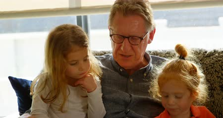 domácké : Active grandfather interacting with grandchildren at home. Children sitting on grandfathers lap 4k