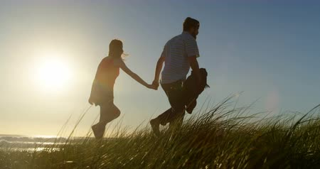 marad : Young couple holding hands and walking on the beach. Bright sun in background 4k