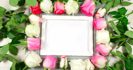 kırılganlık : Blank photo frame surrounded with roses. Fresh pink and white roses around 4k