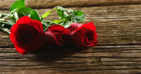 kırılganlık : Three red roses on wooden surface. Valentines day concept 4k Stok Video