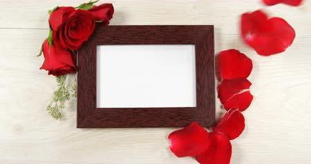 kırılganlık : Red rose petal falling on the photo frame. Frame decorated with red roses 4k