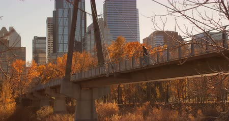 go away : Side view of Caucasian man standing on bridge with bicycle in the city. High-rise buildings and autumn trees on a sunny day 4k