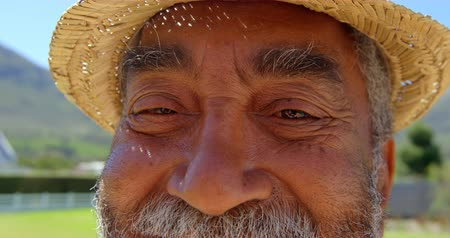 positive ageing : Smiling happy senior man looking at camera on a sunny day. Close-up of senior man 4k