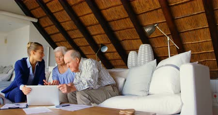 70年代 : Front view of Caucasian senior couple discussing over clipboard with female doctor at comfortable home. They are relaxing on sofa in living room 4k 動画素材