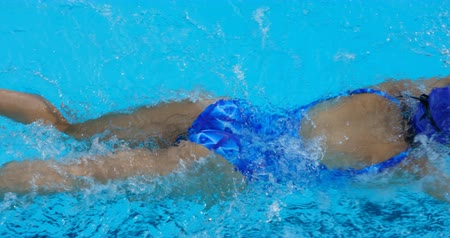 nadador : Young female swimmer swimming inside pool. Female swimmer practicing freestyle 4k