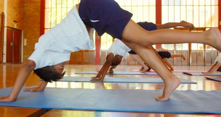 oturum : Side view of group of diverse schoolkids performing yoga on a exercise mat in school. They are exercising together 4k