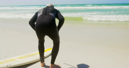 active ageing : Rear view of active senior Caucasian male surfer relaxing on beach in the sunshine. He is looking at sea 4k