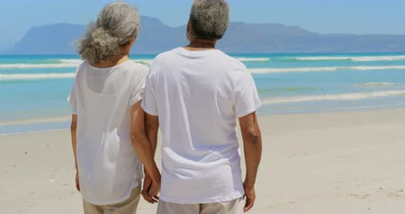 cuarto : Rear view of active senior African American couple holding hands and standing on the beach. They are looking at sea 4k