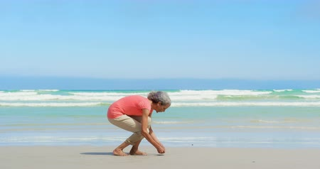 ракушки : Side view of active senior African American woman picking up seashell on the beach. She is collecting seashell 4k