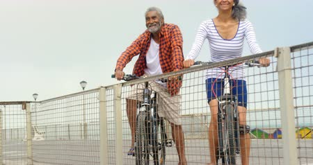 občan : Front view of thoughtful active senior African American couple standing with bicycle on promenade. They are smiling and looking at sea 4k