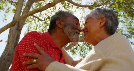 ubytování : Low angle view of active African American senior couple looking face to face at each other. They are smiling 4k