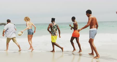 socialization : Side view of mixed-race friends walking on the beach. They are having fun 4k