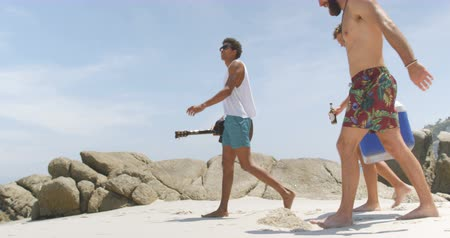 socialization : Side view of mixed race male friends carrying ice box on the beach. They are walking together 4k