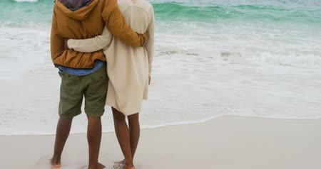 generation z : Rear view of African american couple standing together on the beach. They are spending time together 4k