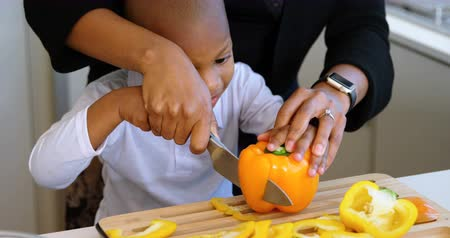 placa : Front view of African american mother and son chopping vegetables in kitchen at home. She is teaching her son. 4k Vídeos