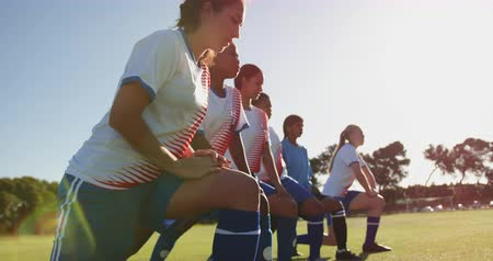 baixo : Low angle view of young diverse female soccer players stretching their legs on soccer field on sunny day. 4k Vídeos