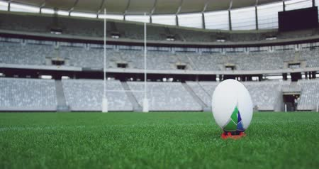 павильон : Close-up of rugby ball on a grass in the stadium. Empty stadium in background 4k