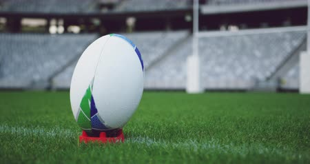 oválný : Close-up of rugby ball on a grass in the stadium. Empty stadium in background 4k