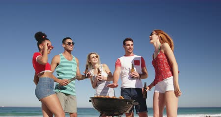 пляжная одежда : Low angle front view of a multi-ethnic group of young adult friends standing on a beach having a barbecue, talking and drinking beers. Young friends having summer fun on the beach together 4k