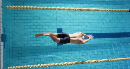calções de banho : Overhead view of a young Caucasian male swimmer training in a swimming pool, jumping into water