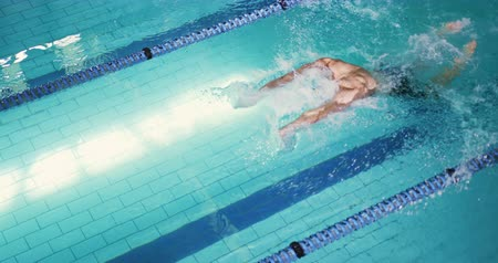 calções de banho : High angle side view of a young Caucasian male swimmer training in a swimming pool, butterfly
