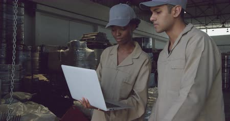 carregamento : Side view close up of a young mixed race female warehouse worker standing using a laptop computer with a young mixed race male warehouse worker holding in a warehouse loading bay Vídeos