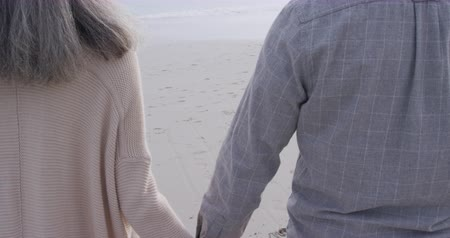 companionship : Rear view close up of a mature mixed race couple holding hands and walking on a beach by the sea