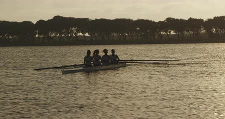 scull : Rear view of a team of four young adult Caucasian women rowing in a racing shell on a river Stock Footage
