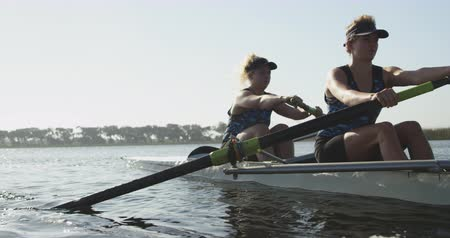 экипаж : Front view of two young adult Caucasian women rowing in a racing shell on a river during training Стоковые видеозаписи