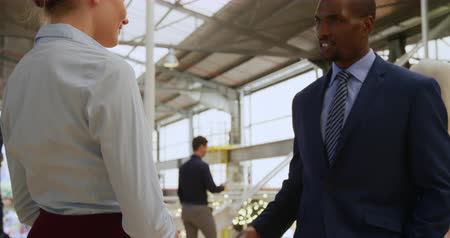 delegeren : Side view close up of a young Caucasian businesswoman and a young African American businessman talking and shaking hands in a modern foyer outside a business conference Stockvideo