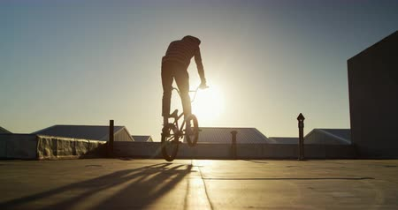bmx : Side view of a young Caucasian man riding a BMX bike and doing a trick on the rooftop of an abandoned warehouse, backlit by the setting sun