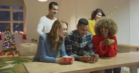 socialising : Front view of a group of young adult multi-ethnic male and female friends socialising in the sitting room of an apartment with a decorated Christmas tree in the background, using a phone, smiling and drinking coffee